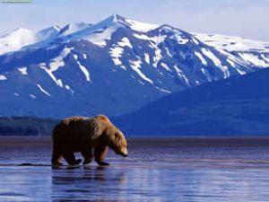 Alaska Kırım Savaşı yüzünden satılmış