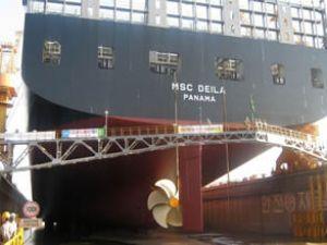 MSC'nin 25. panamax gemisi filoya katıldı