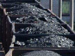 Yalnız 118 yıl yetecek kömür var