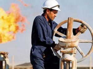 Türkiye'de sektörlere göre büyüme oranları