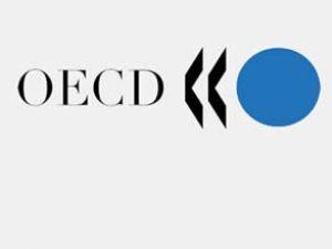 OECD'den ''işsizlik oranı artacak'' uyarısı