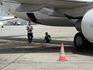 AHL personeli çareyi uçağın altında buldu