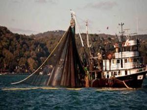 Yanlış avlanma balıkların sonunu getiriyor