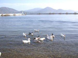 """Eğirdir Gölü """"özel koruma"""" ile korunacak"""