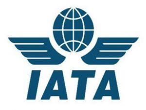 IATA'dan 2013 için kar tahminleri