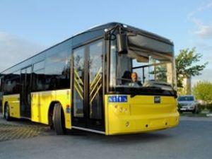 İstanbullu Solo otobüslere binecek