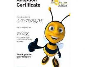 SAP, arı neslini koruma altına aldı
