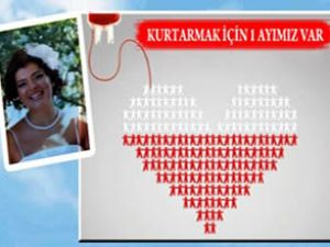 Hostes Gülenay'a 1 ay içinde ilik bulunmalı