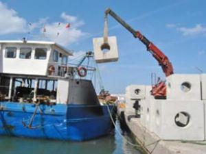 Yalova'da yapay resif projesi hayata geçti