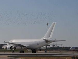 Azerbaycan'a direkt uçuş başlanıyor