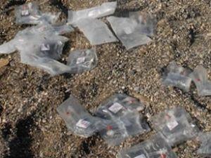 Plaja onlarca serum vurdu