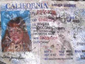 Uçak kazasında ünlü Amerikalı şarkıcı öldü