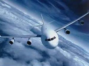 Japon All Nippon'un uçağı acil iniş yaptı