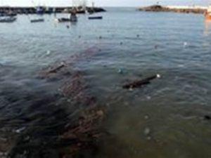 Denizdeki kirlilik Meclis gündemine taşındı