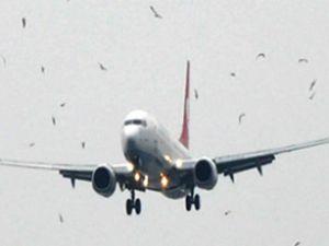 Ankara uçağının motorunda hasar çıktı