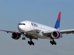 Delta uçağı kuş yüzünden kalkamadı
