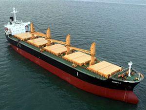Golden Ocean iki supramax siparişi verdi