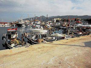 Aliağalı balıkçılara liman dar geliyor