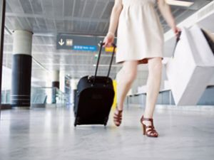 El bagajları Havayolu şirketlerini yakacak