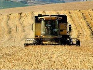 Tarım ürünleri ihracatı yüzde 10,3 arttı