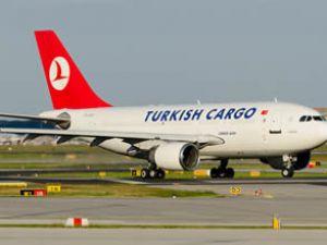 Türk balıkları THY ile Boston'a uçacak