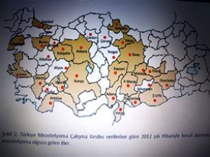 Sağlık Bakanlığı asbest haritasını çıkardı