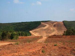 3. köprü için 2,7 milyon ağaç kesilecek