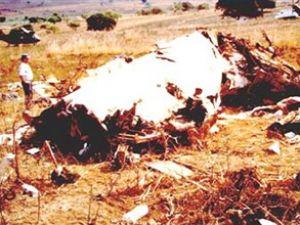Mozambik yolcu uçağı Namibya'da düştü