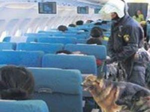 THY uçaklarına görülmemiş uygulama