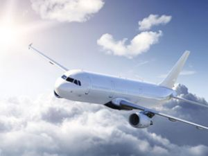 Rusya'da tuvalet kavgası uçak indirtti