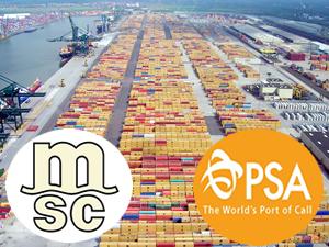 MSC-PSA ortaklığı Antwerp Limanı'nda sürüyor
