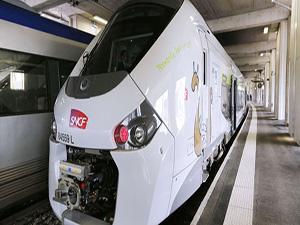 Fransa'da yeni yapılan hızlı trenler perona sığmadı
