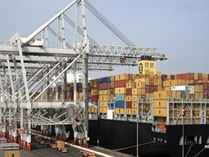 Rotterdam Limanı'ndaki gecikme devam edecek