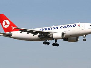 Irak'a yumurtayı Turkish Cargo götürecek