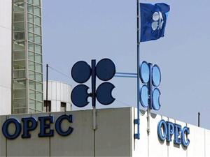 OPEC'in küresel petroldeki payı azaldı
