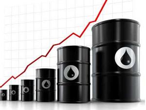 TPAO'ya 1 milyar dolarlık 'petrol' kredisi