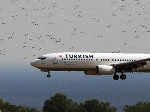 THY'ye ait 6 uçak tehlike atlattı!