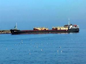 Fatsa Limanı için çalışmalar başladı