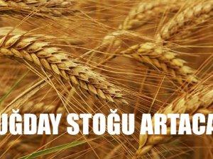 Buğday stoğu artıyor