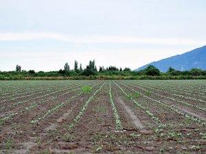 Çiftçilere borç erteleme müjdesi