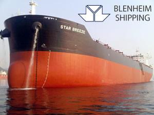 CAFIMA Holding'in armatörlük şirketi Blenheim'in filosu, banka borcu yüzünden satıldı