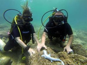 Antalya dalış turizminde farkındalık yaratıyor