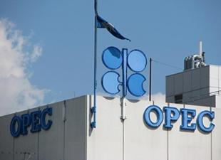 Kritik toplantı öncesi OPEC'te kutuplaşma büyüyor