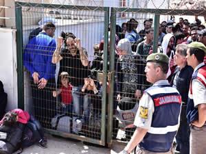 Bodrum'da 185 kaçak yakalandı