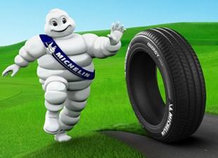 Michelin'den WWF işbirliği