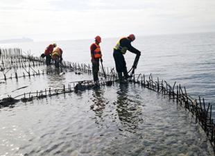Dilovası Belde Liman'ın alt yapı inşası tamamlandı