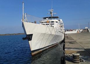 Fatsa Limanı'na demirleyen gemi sayısı her yıl yükseliyor