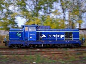 PKP Cargo ile Greenbrier sözleşme imzaladı
