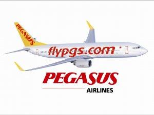 Pegasus, kârını artırdı