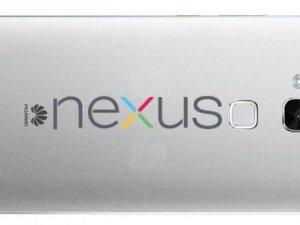 Huawei Nexus 6'nın ilk görüntüleri sızdı